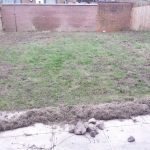 Lawn Restoration // Moss and stones / removal / heavy raking