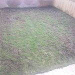 Lawn Restoration // Stones and Moss removal / heavy raking